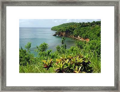 Saint Lucia Framed Print by Willie Harper