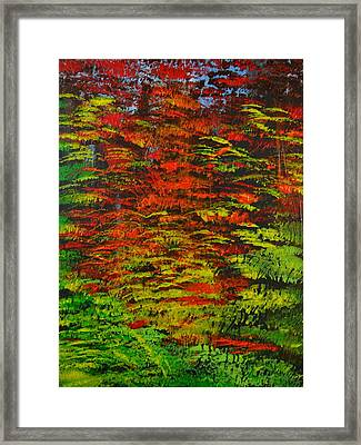 4 Seasons Fall Framed Print