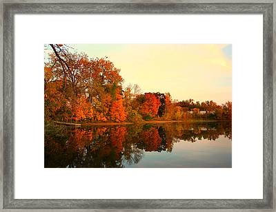 Shady Oak Lake  Framed Print by Amanda Stadther