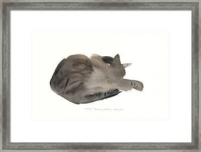 Sleeping Cat Framed Print by Claudia Hutchins-Puechavy