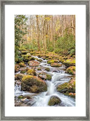 Smoky Mountain Stream 1 Framed Print