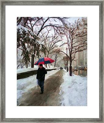 Snowfall In Central Park Framed Print