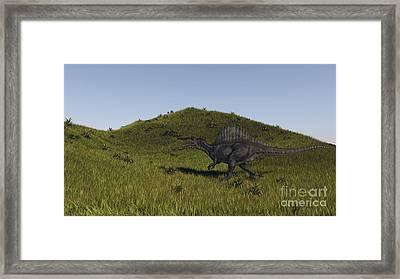 Spinosaurus Walking Across A Grassy Framed Print by Kostyantyn Ivanyshen