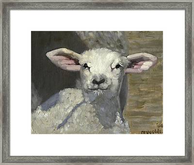 Framed Print featuring the painting Spring Lamb by John Reynolds