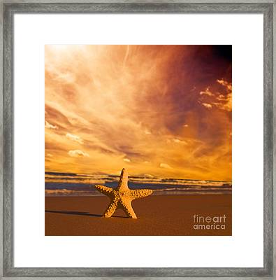 Starfish On The Beach At Sunset Framed Print by Michal Bednarek