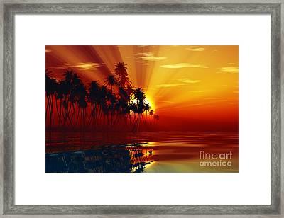 Sun Rays Inside Coconut Palms Framed Print