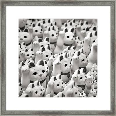 The Cat Temple In Tokyo Framed Print