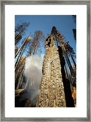 The King Fire Framed Print