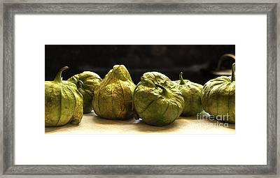 Tomatillos Framed Print