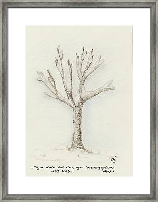 4 Trees-2nd Tree Winter Framed Print