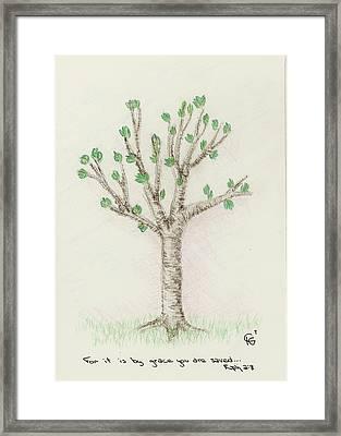 4 Trees-3rd Tree Spring Framed Print