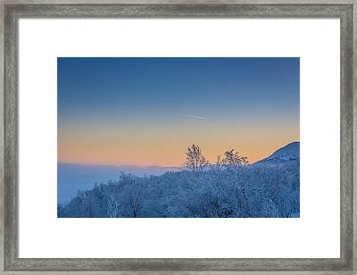 Trees In The Frozen Landscape, Cold Framed Print