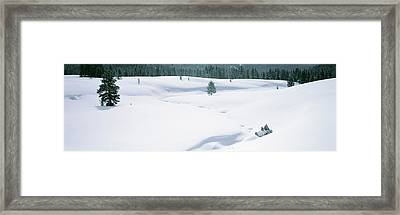 Trees On A Snow Covered Landscape Framed Print by Panoramic Images