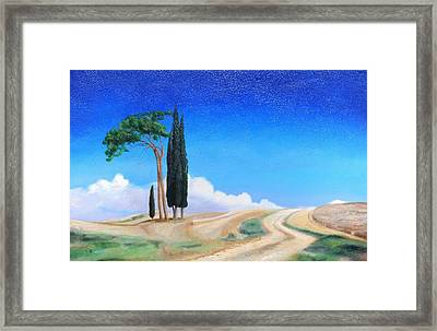 4 Trees, Picenza, Tuscany, 2002 Oil On Canvas Framed Print by Trevor Neal