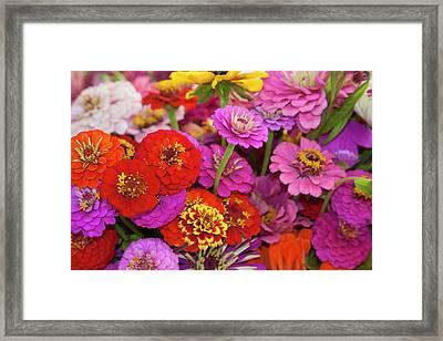 Usa, Georgia, Savannah, Bouquet Framed Print
