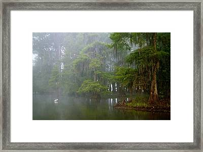 Usa, Louisiana, Lake Martin Framed Print by Jaynes Gallery