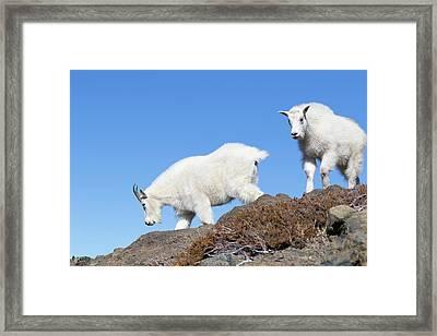 Usa, Washington State, Alpine Lakes Framed Print