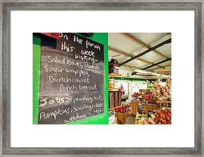 Washingpool Farm In Bridport Framed Print