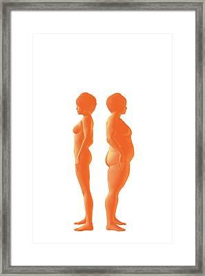 Weight Management Framed Print by Carol & Mike Werner