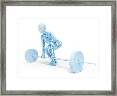 Weight Training Posture Framed Print by Sebastian Kaulitzki