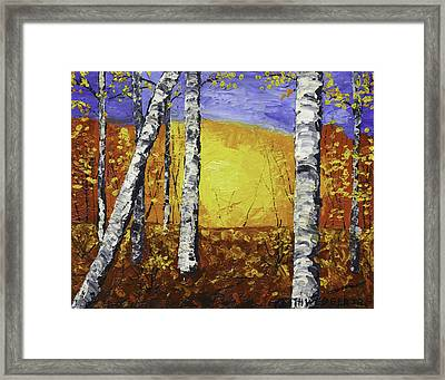 White Birch Tree Abstract Painting In Autumn Framed Print by Keith Webber Jr