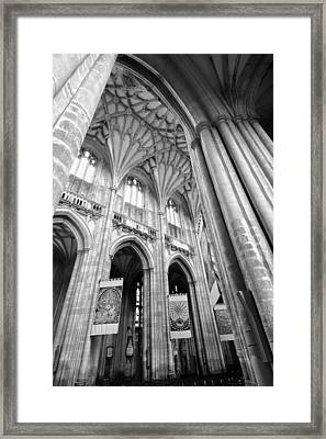 Winchester Cathedral Framed Print by Steven Poulton
