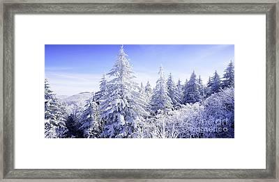 Winter Along The Highland Scenic Highway Framed Print