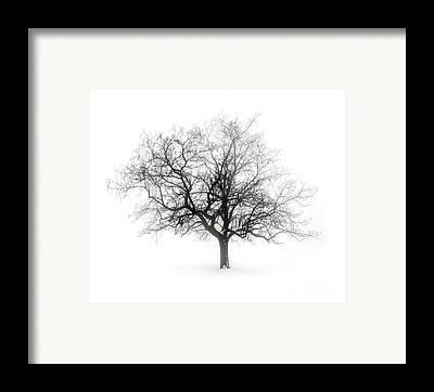 Gray Framed Prints