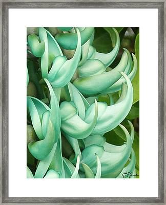 Jade Vine Framed Print by Ellen Henneke