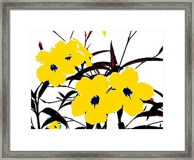 4 Yellow Jacks Framed Print