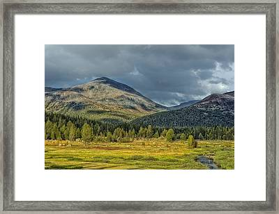 Yosemite National Park California Framed Print by Mountain Dreams