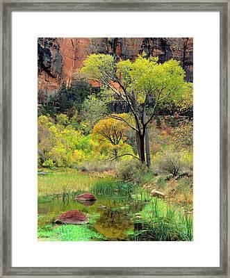 Zion National Park, Utah Framed Print by Scott T. Smith