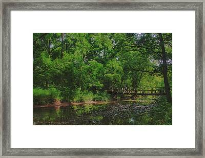 40 Mile Creek  Framed Print by Dan  Copeland