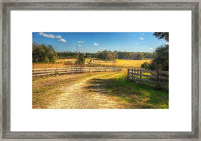 Framed Print featuring the photograph 4037-47-204 by Lewis Mann