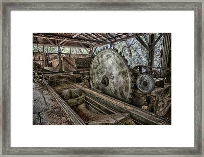 42 Framed Print by Betty Depee
