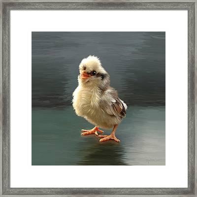 44. Tollbunt Chick Framed Print by Sigrid Van Dort