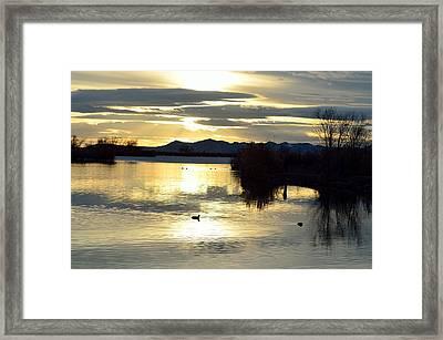 4490 Framed Print by Robert Reese
