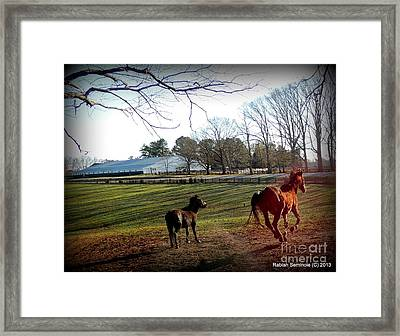 45 And Going Strong Framed Print
