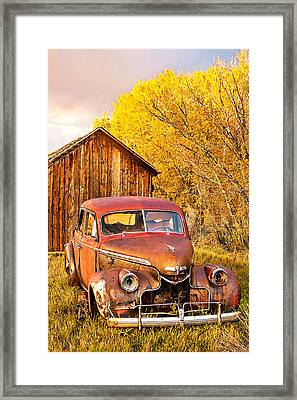 46 Chevy In The Weeds Framed Print