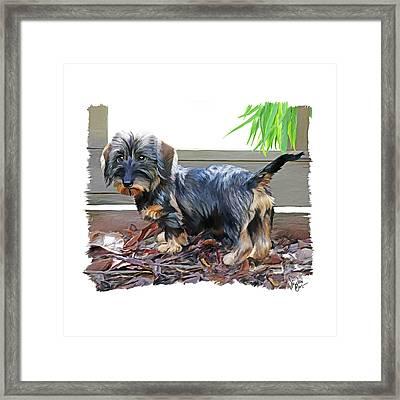 49. Pup Framed Print by Sigrid Van Dort
