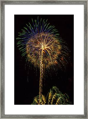 4th July #13 Framed Print by Diana Powell