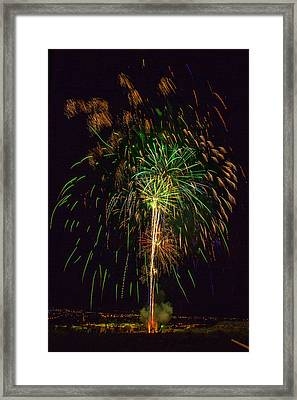 4th July  Framed Print by Diana Powell