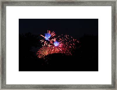 4th Of July Fireworks - 011319 Framed Print by DC Photographer