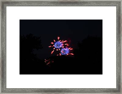 4th Of July Fireworks - 011324 Framed Print