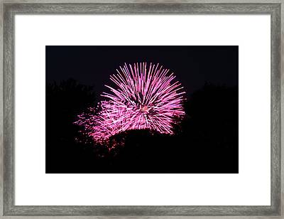 4th Of July Fireworks - 011326 Framed Print by DC Photographer