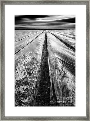 5-4-3 Framed Print by John Farnan
