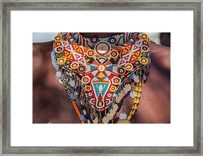 Africa, Kenya, Samburu National Reserve Framed Print