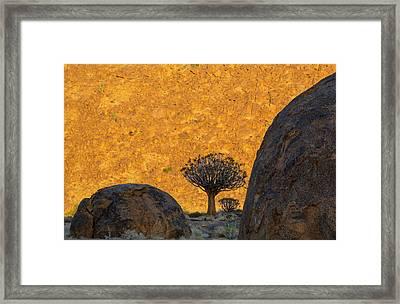 Africa, South Africa, Richtersveld Framed Print by Jaynes Gallery