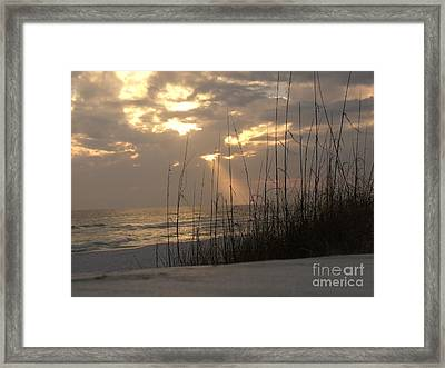 Alone In Heaven Again Framed Print by Craig Calabrese