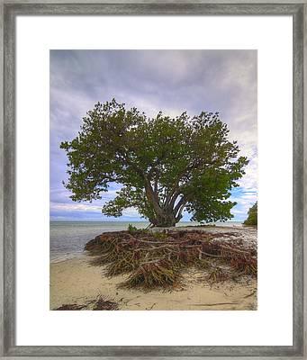 Anne's Beach-1 Framed Print by Rudy Umans